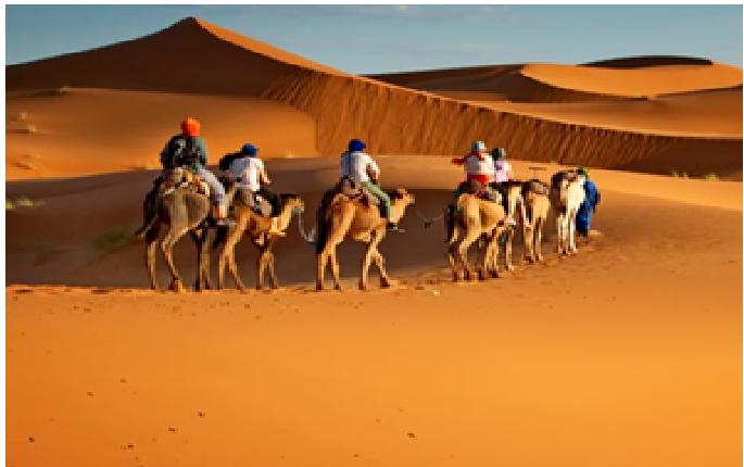 Book Dubai Tour Packages (Holiday Deals)   DoTravel