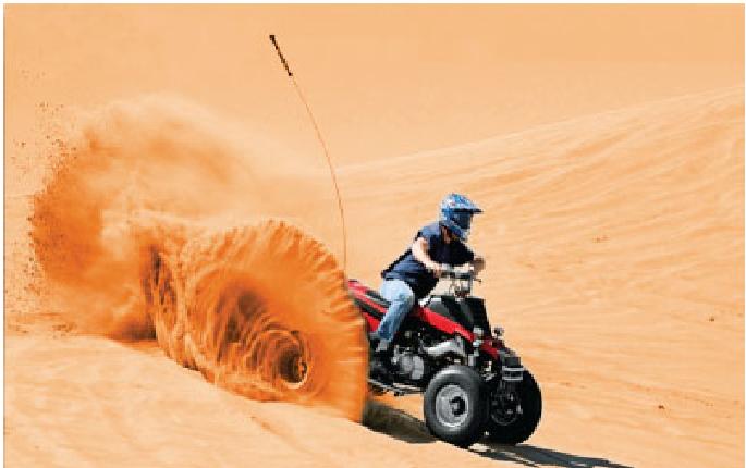 Explore the best Activities in Dubai Desert Safari