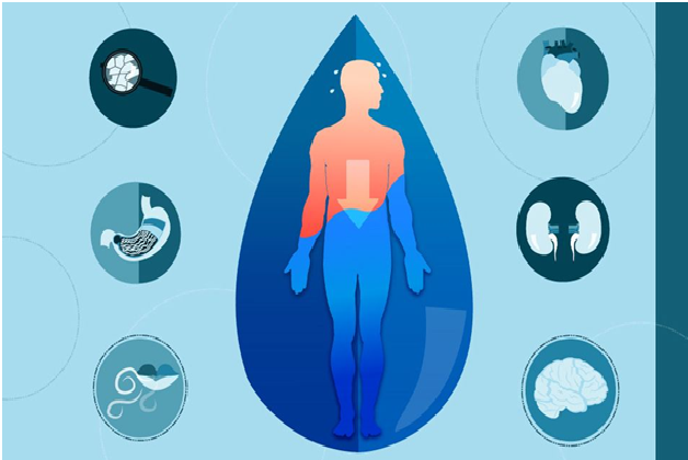 stay-hydrated-to-prevent-cancer