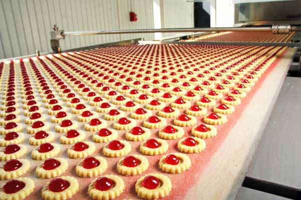 How Does Biscuit Rotary Moulding Machine Help In Making Biscuits