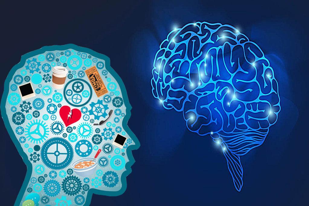 Phenylpiracetam-Helps-to-Improve-Cognitive-Function